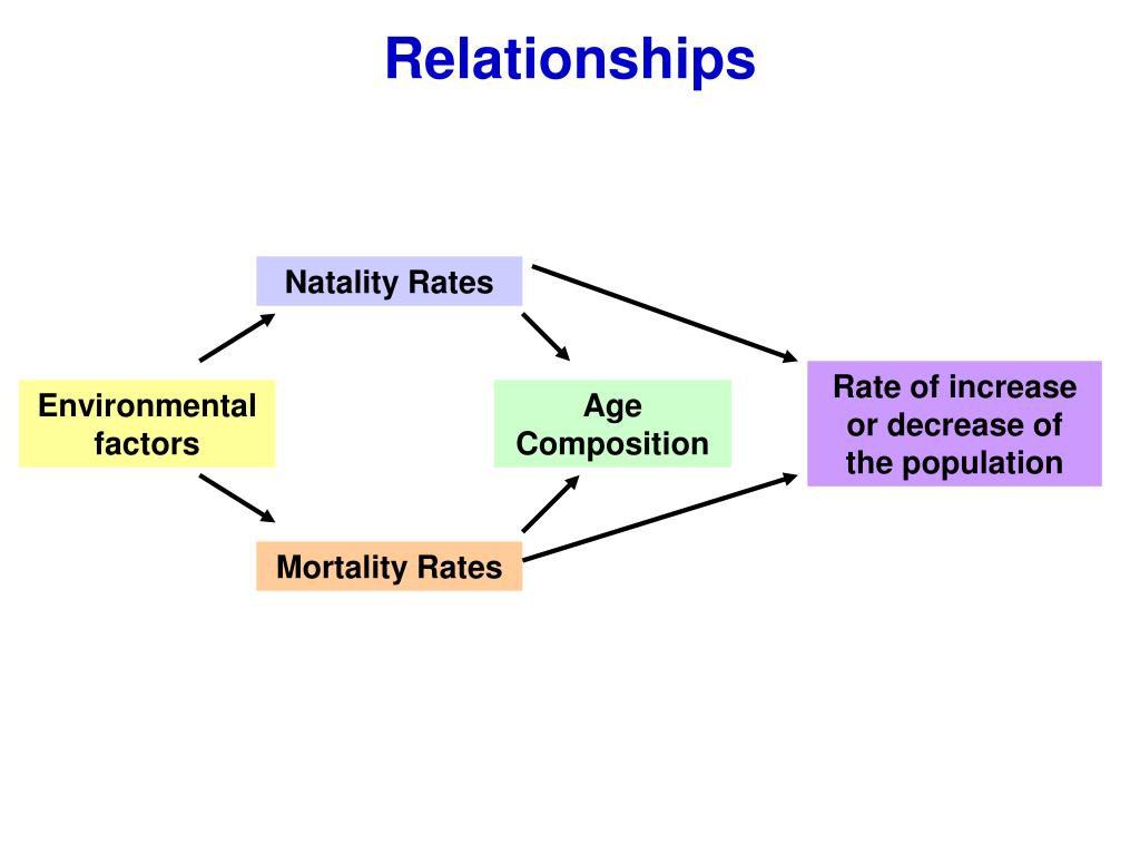 Natality Rates