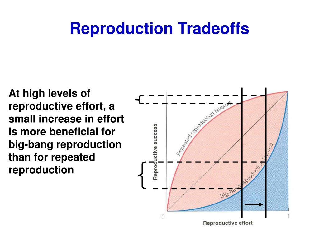 Reproduction Tradeoffs