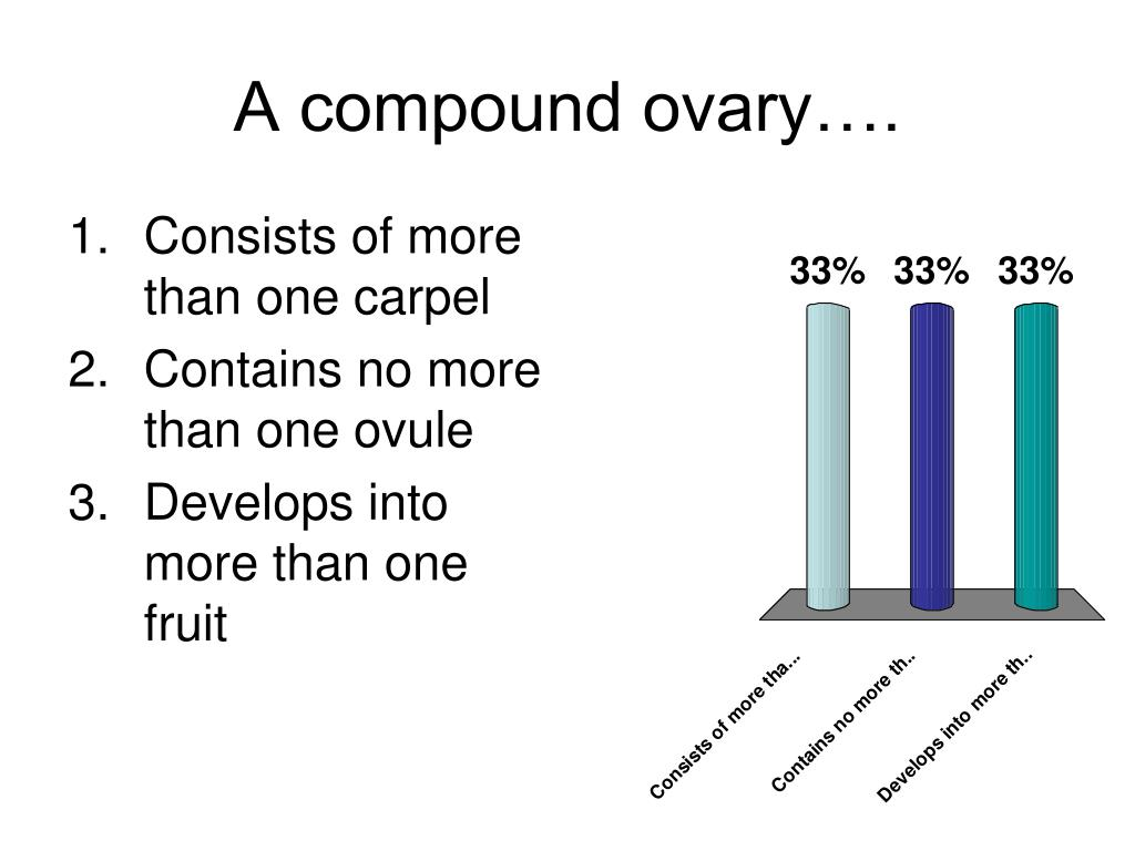 A compound ovary….