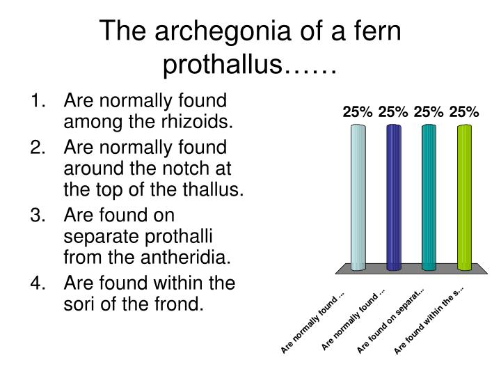 The archegonia of a fern prothallus l.jpg