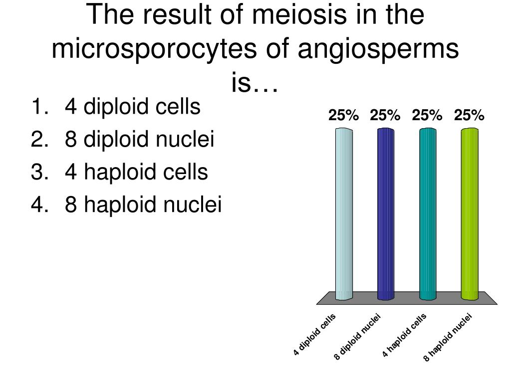 The result of meiosis in the microsporocytes of angiosperms is…