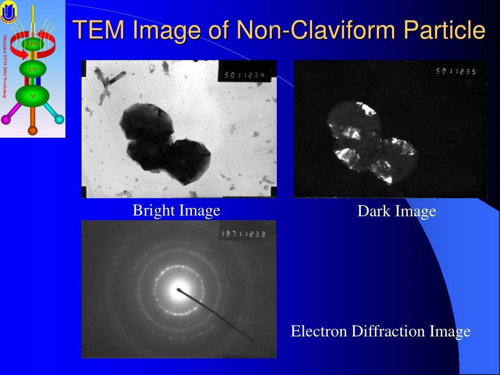 TEM Image of Non-Claviform