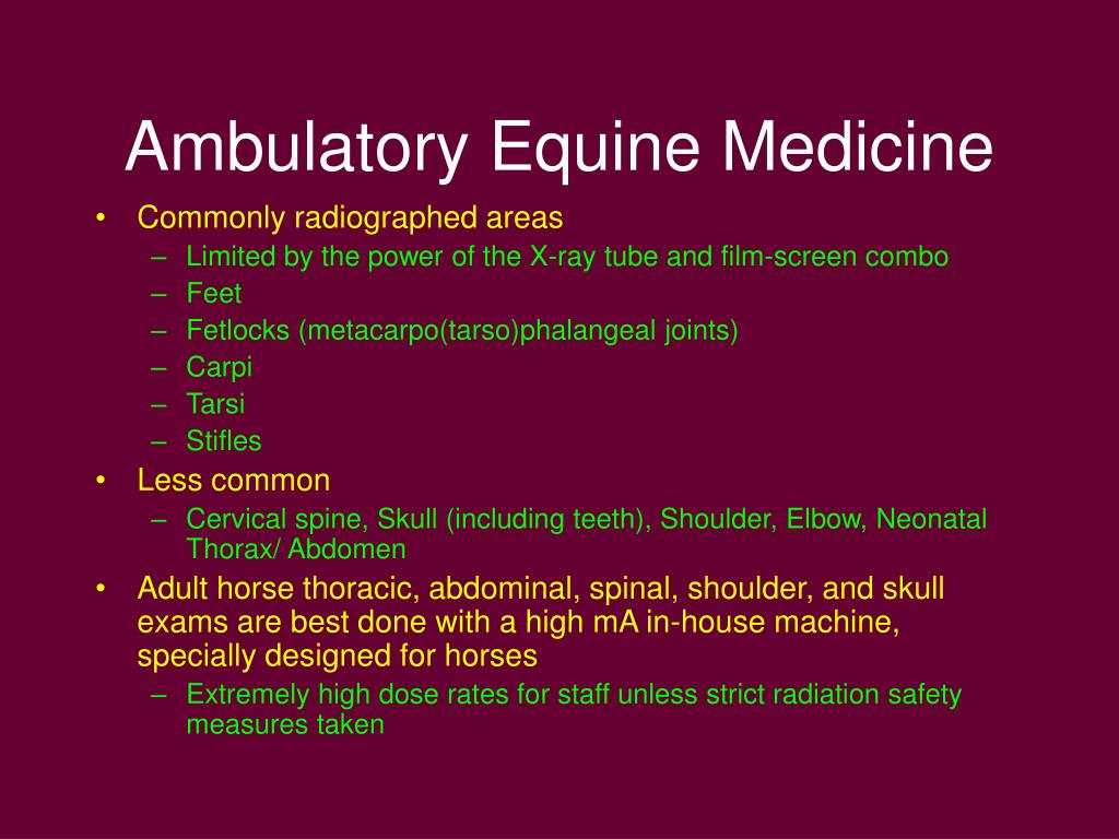 Ambulatory Equine Medicine
