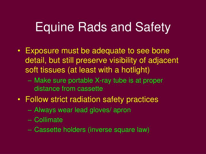 Equine rads and safety
