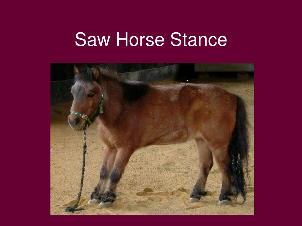 Saw Horse Stance