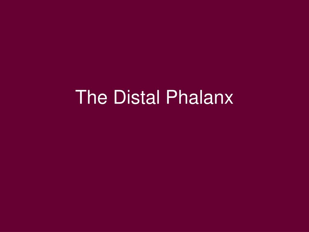 The Distal Phalanx