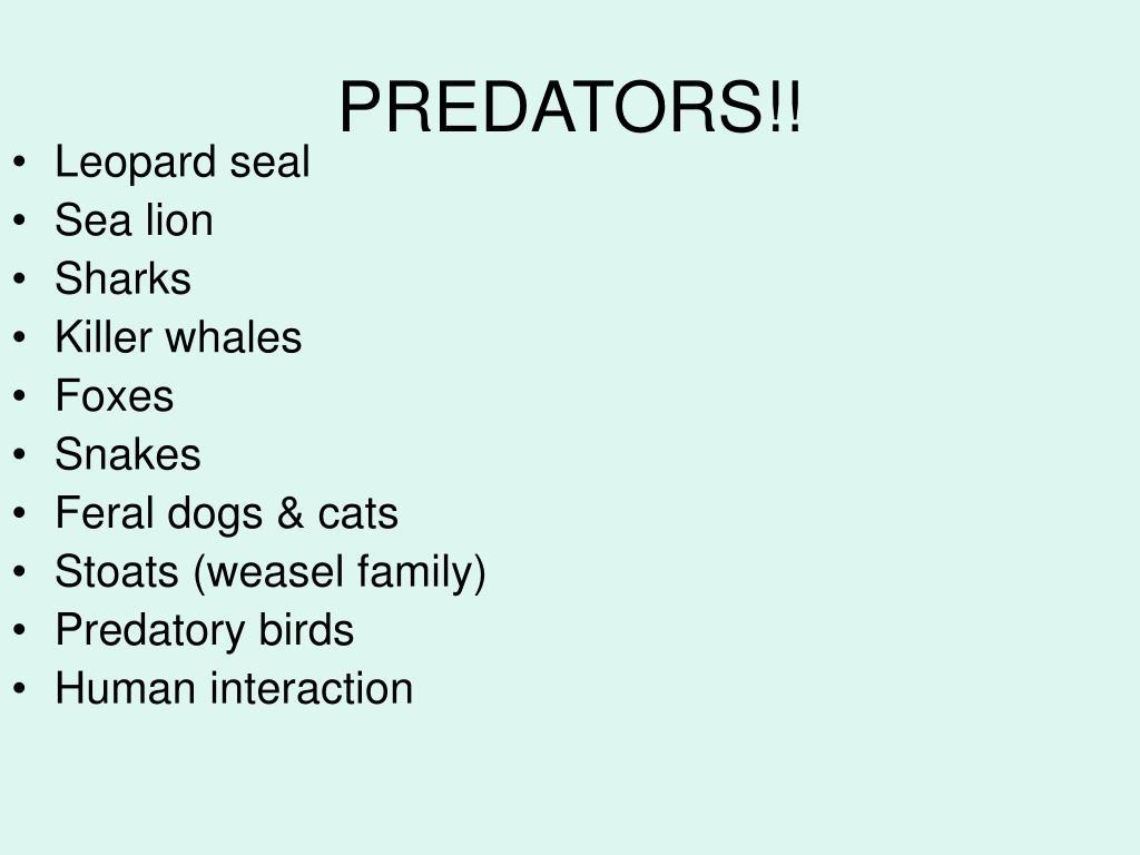 PREDATORS!!
