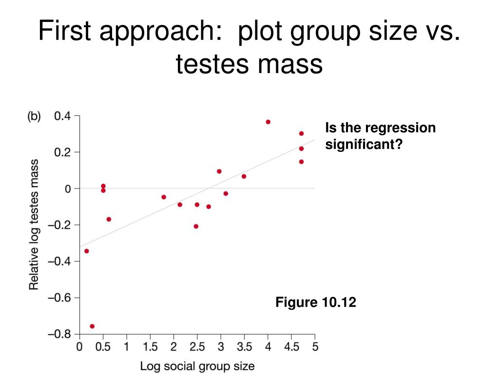 First approach:  plot group size vs. testes mass