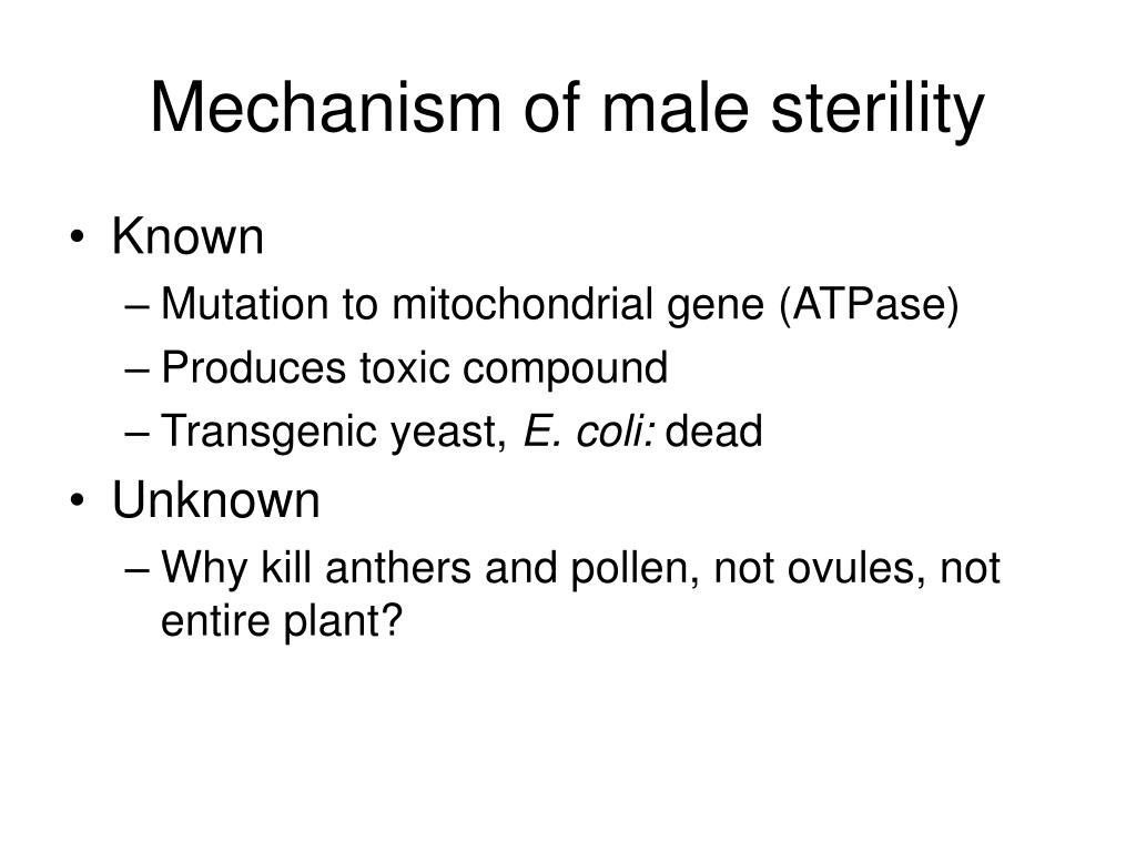Mechanism of male sterility