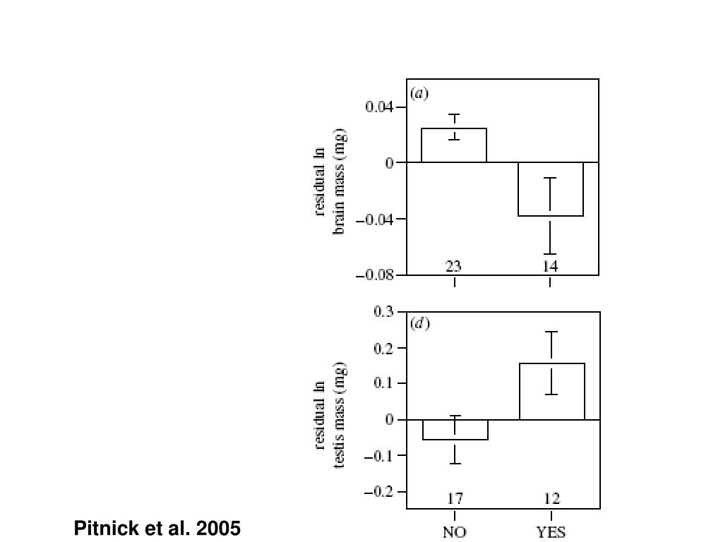 Pitnick et al. 2005