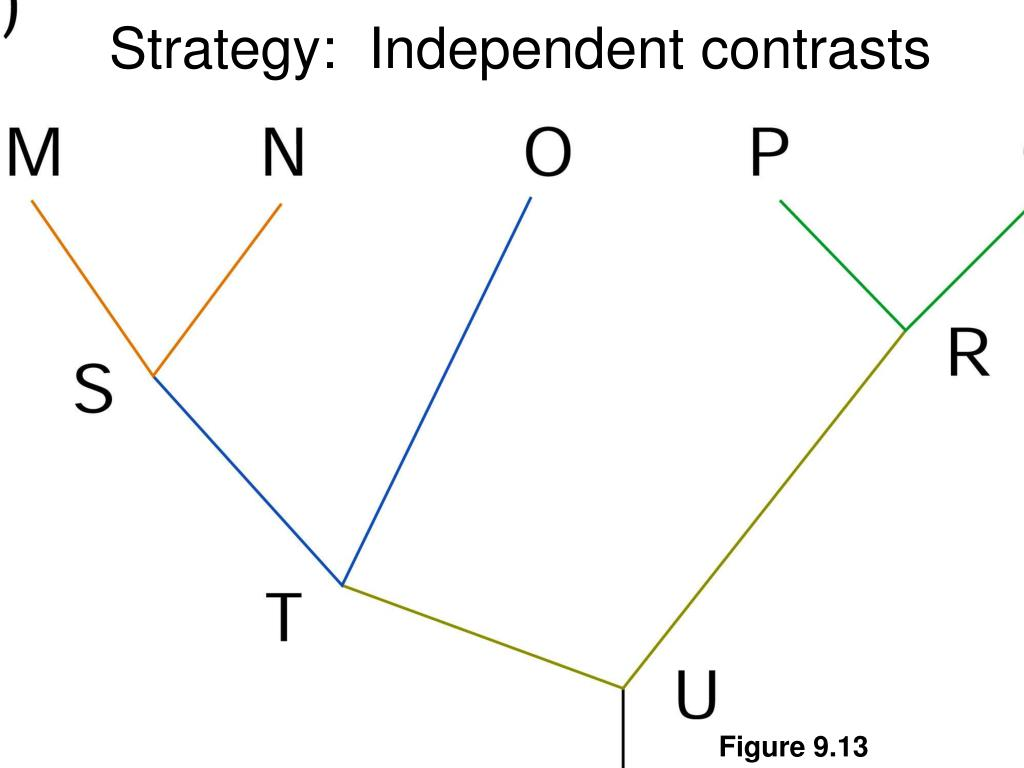 Strategy:  Independent contrasts