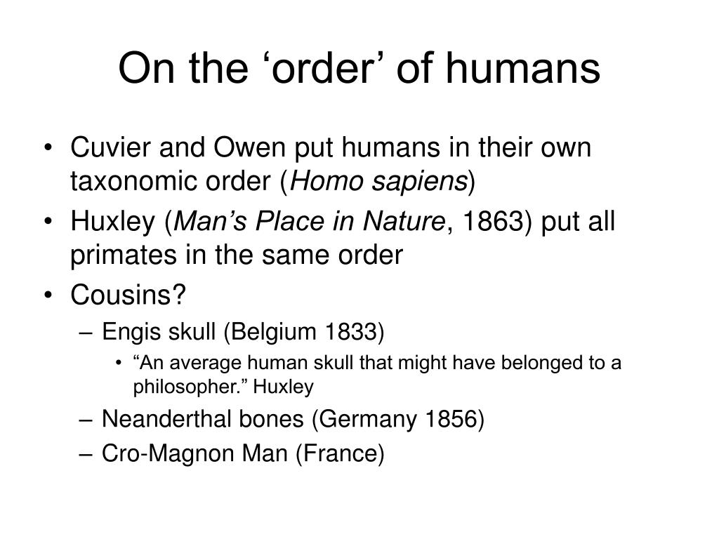 On the 'order' of humans
