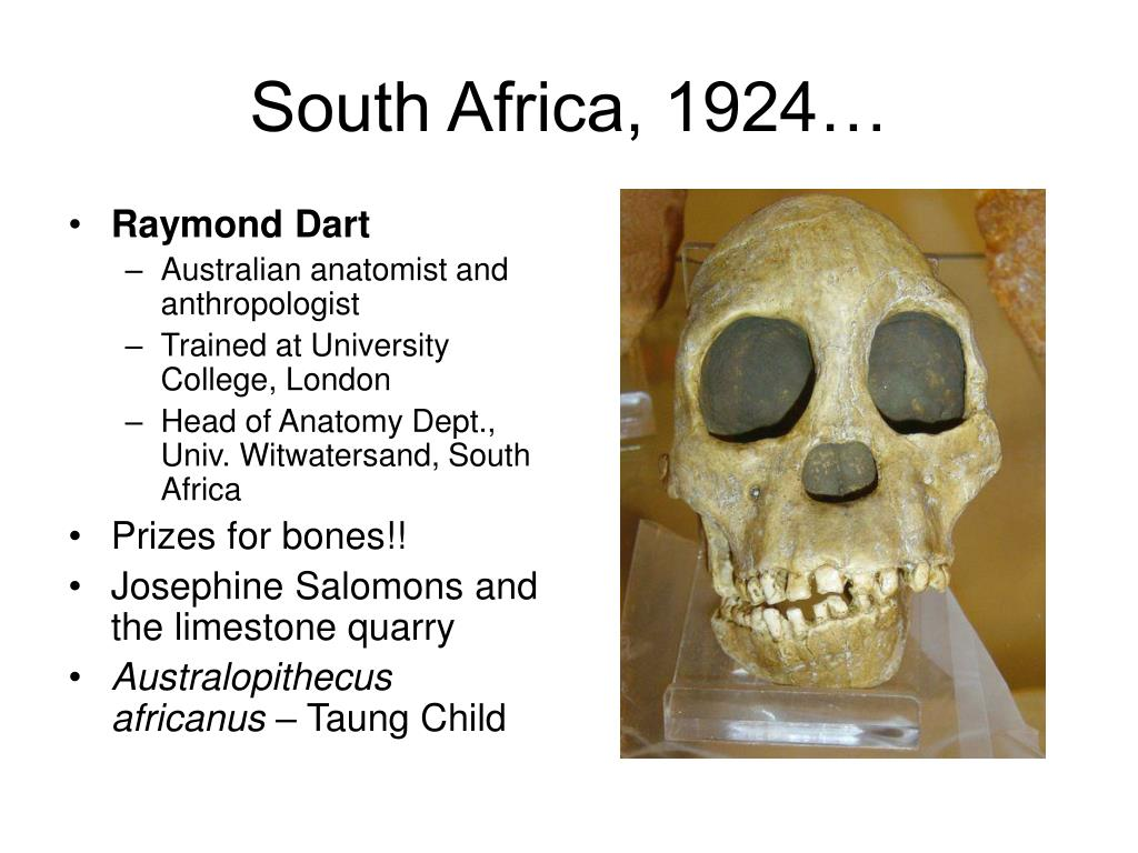 South Africa, 1924…