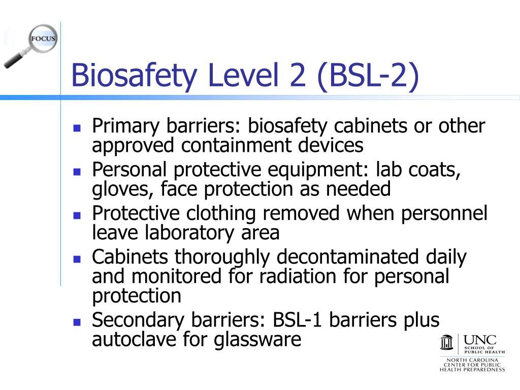 Biosafety Level 2 (BSL-2)