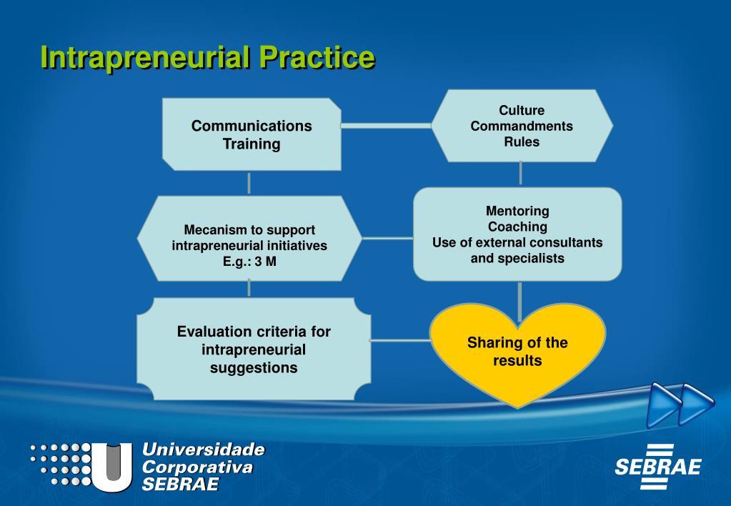 Intrapreneurial Practice