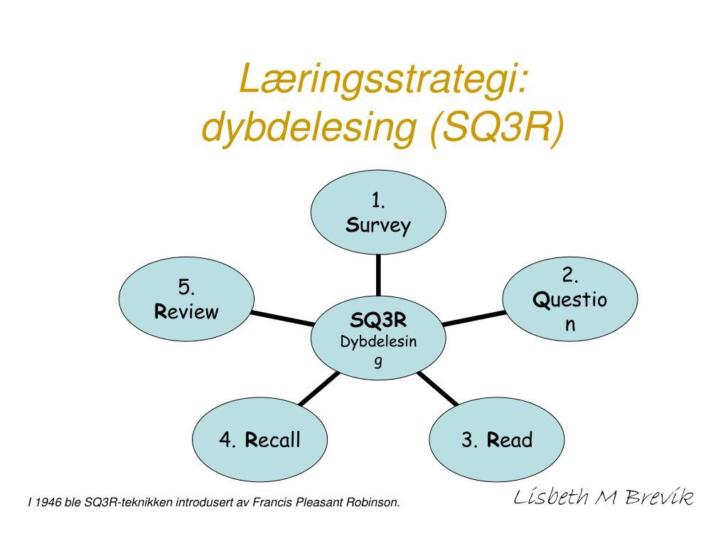 Læringsstrategi: