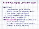 4 blood atypical connective tissue