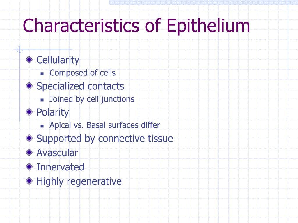Characteristics of Epithelium
