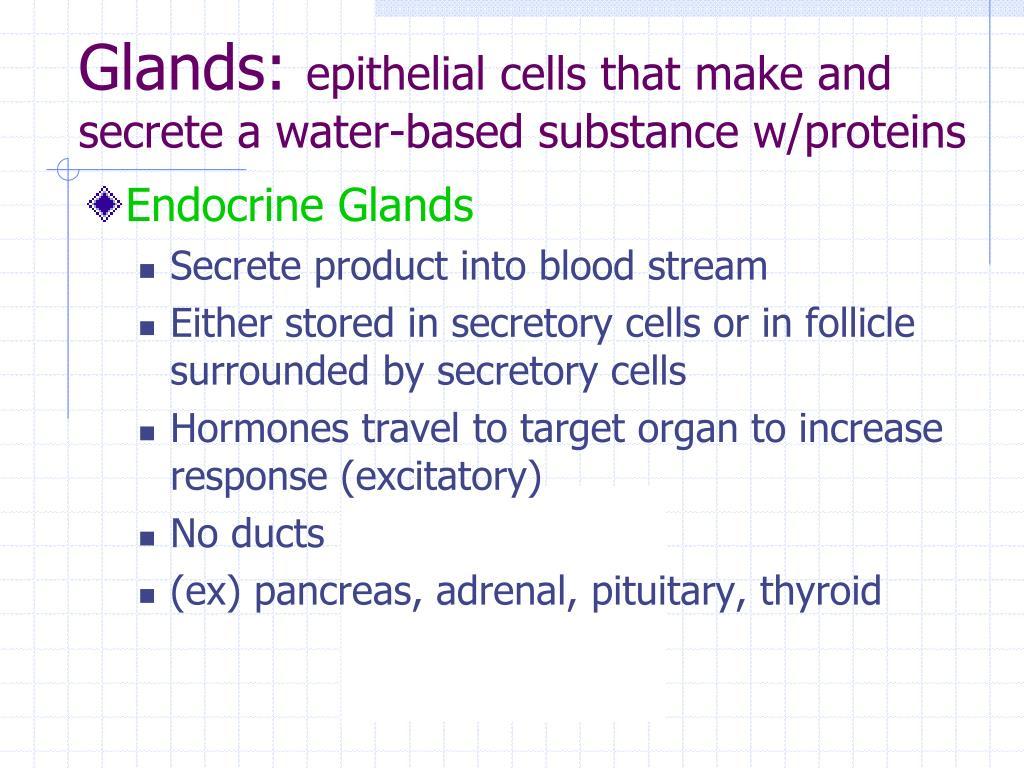 Glands: