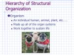 hierarchy of structural organization9