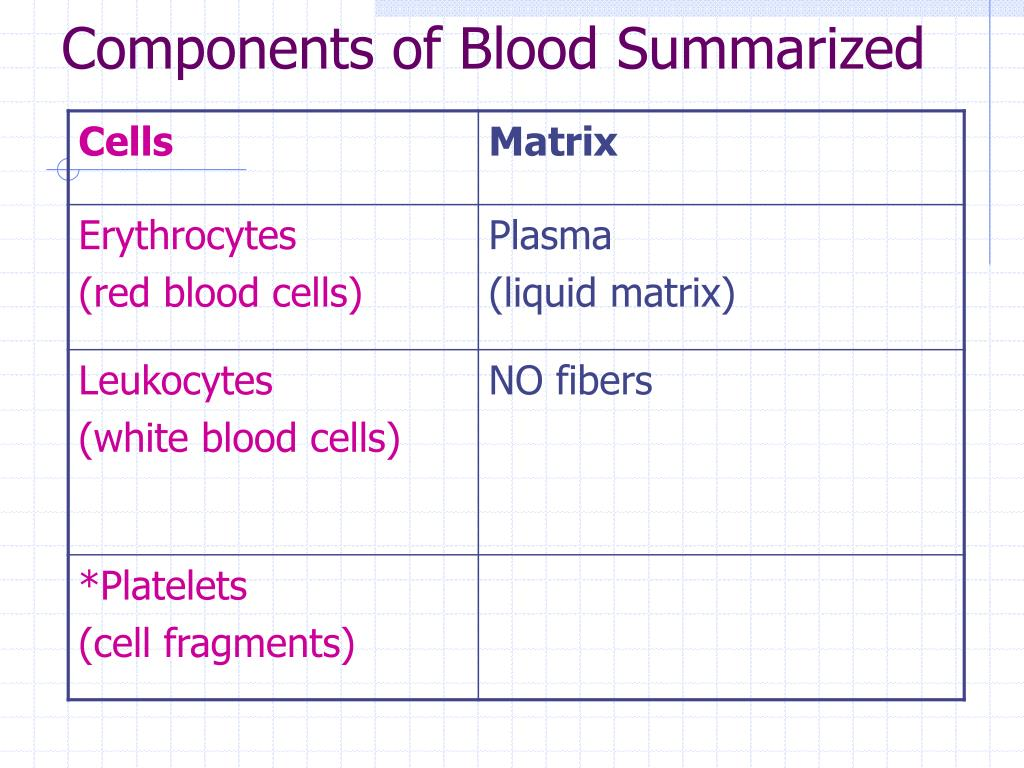 Components of Blood Summarized