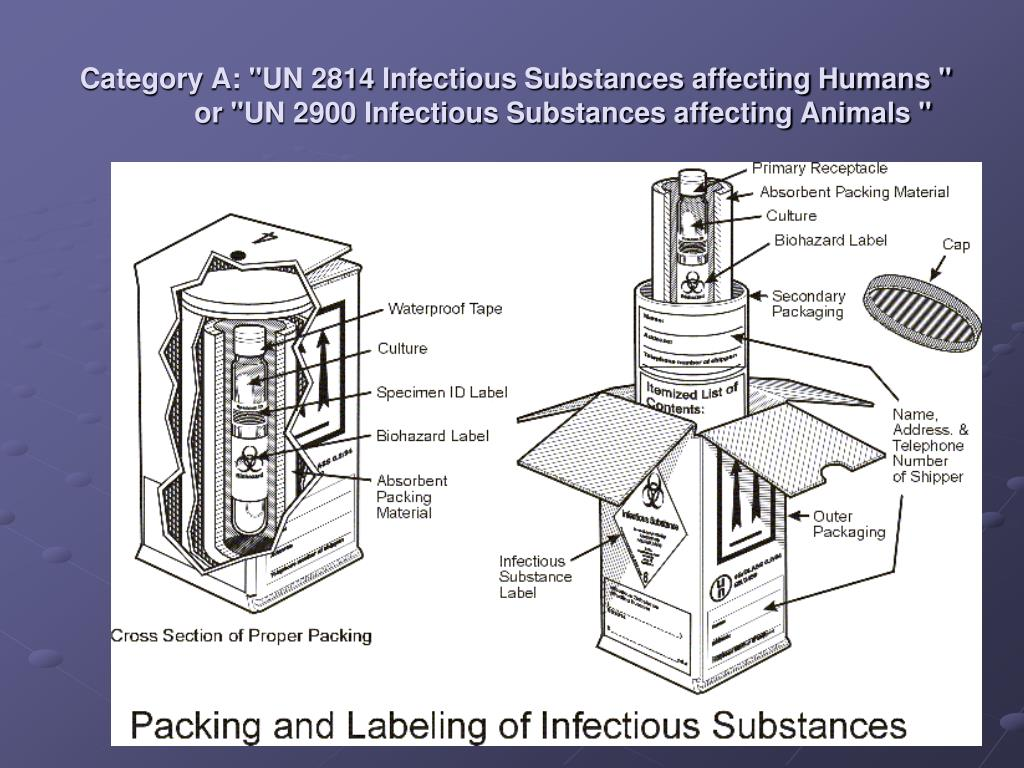 "Category A: ""UN 2814 Infectious Substances affecting Humans "" or ""UN 2900 Infectious Substances affecting Animals """