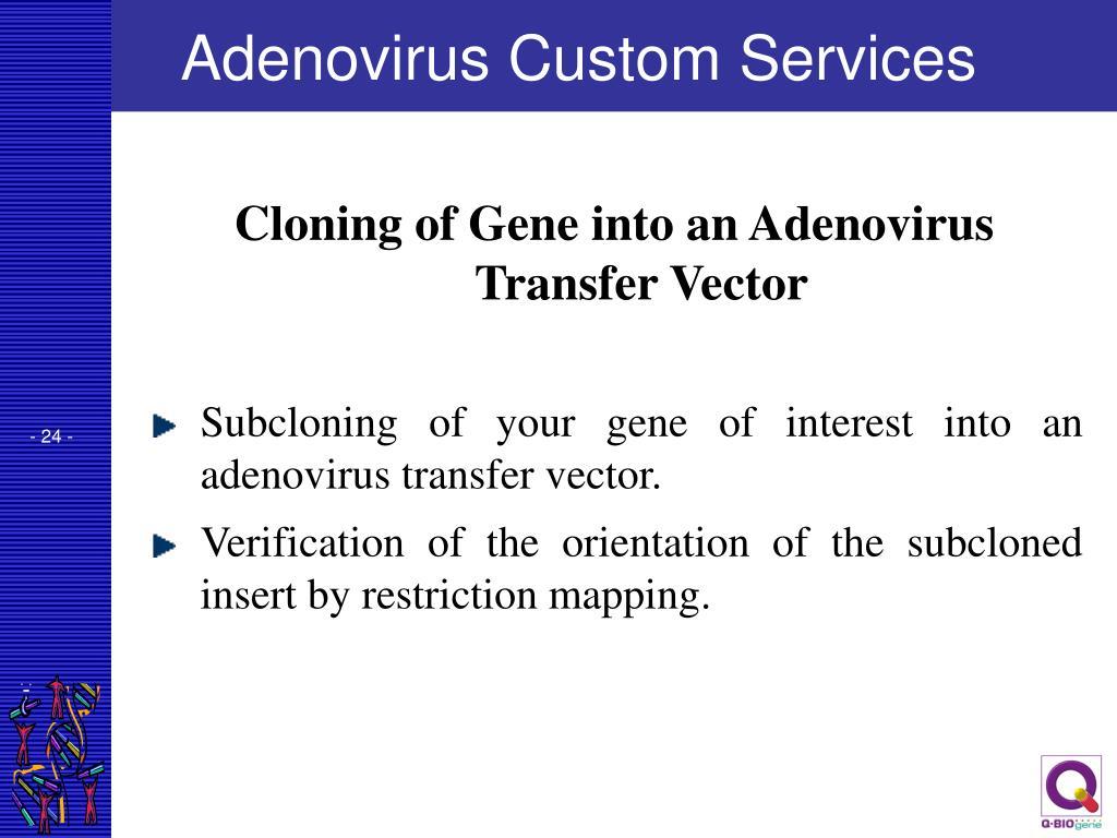 Adenovirus Custom Services