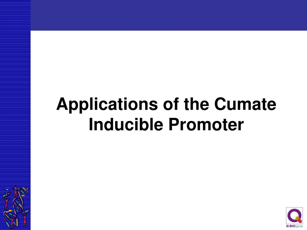 Applications of the Cumate Inducible Promoter