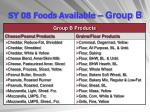 sy 08 foods available group b