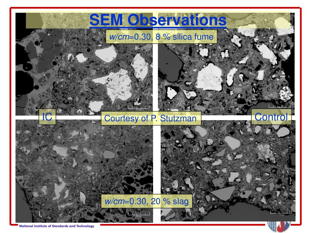 SEM Observations