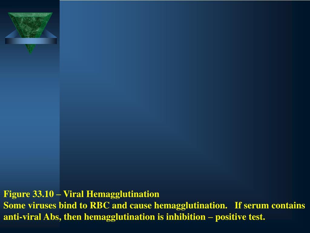 Figure 33.10 – Viral Hemagglutination