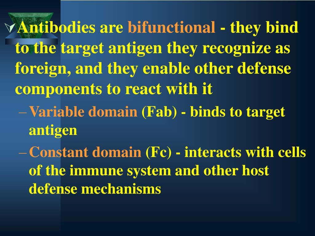 Antibodies are