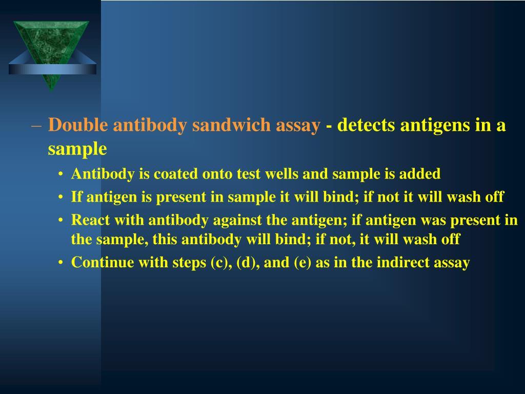 Double antibody sandwich assay