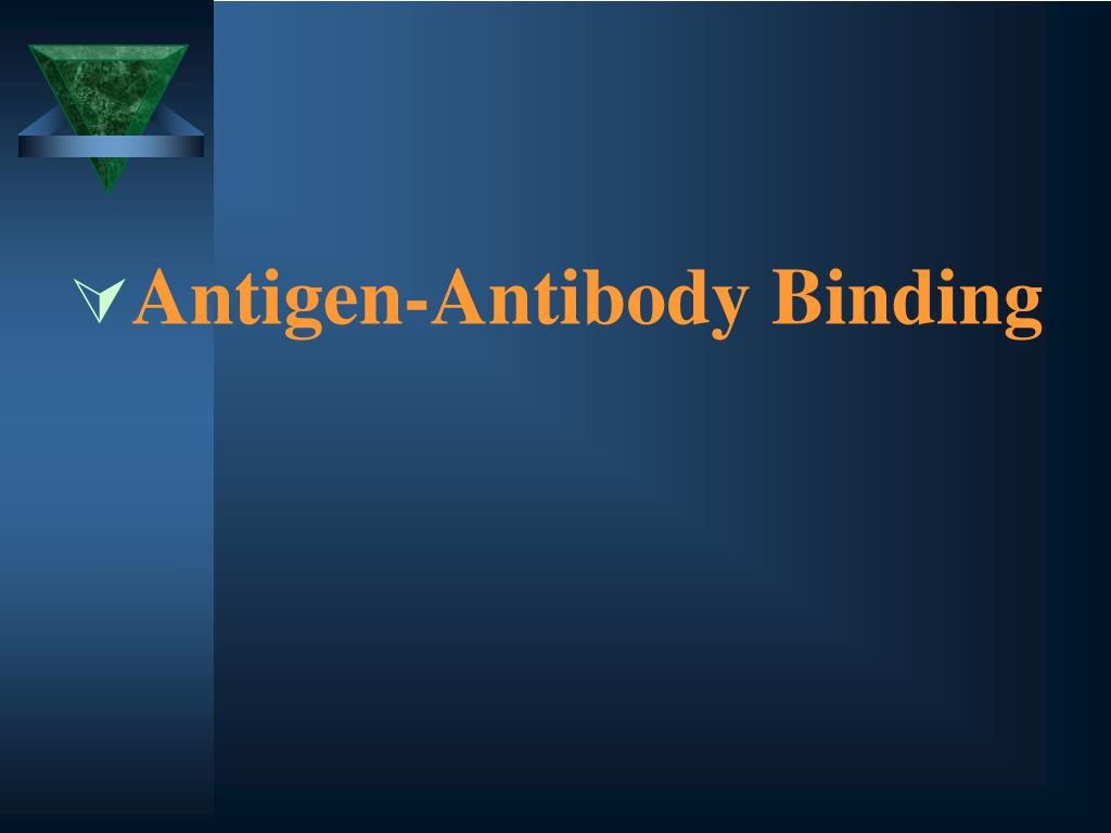 Antigen-Antibody Binding