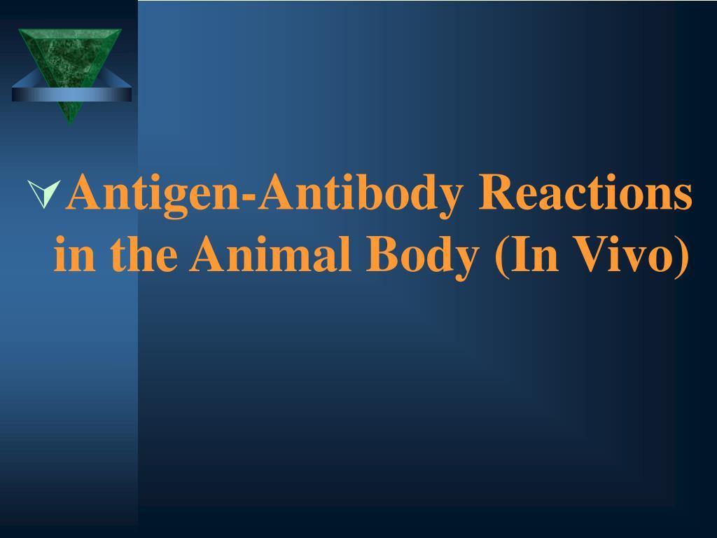 Antigen-Antibody Reactions in the Animal Body (In Vivo)