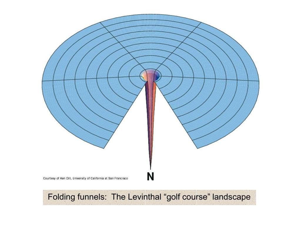 "Folding funnels:  The Levinthal ""golf course"" landscape"