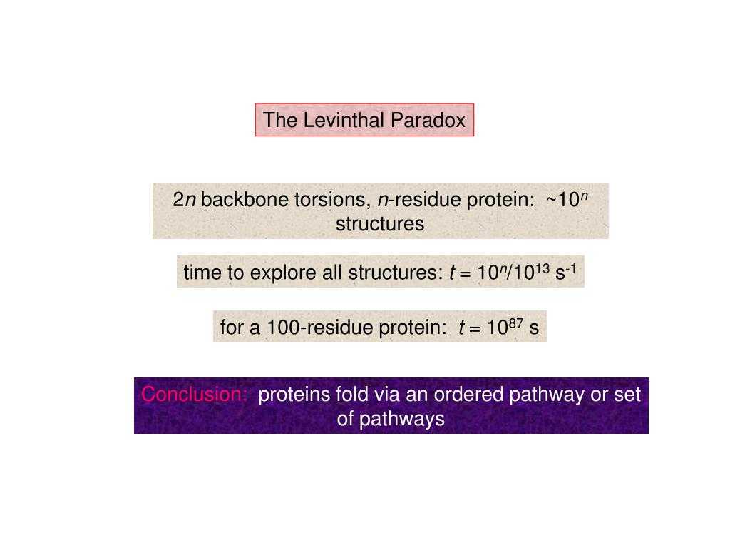 The Levinthal Paradox