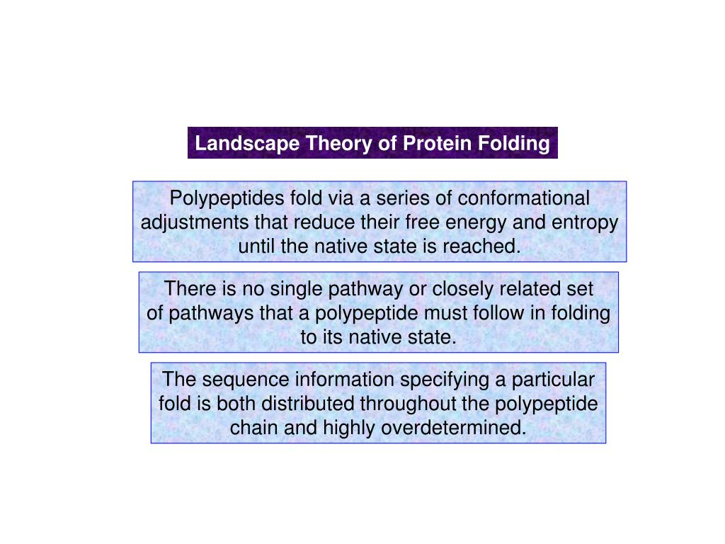 Landscape Theory of Protein Folding