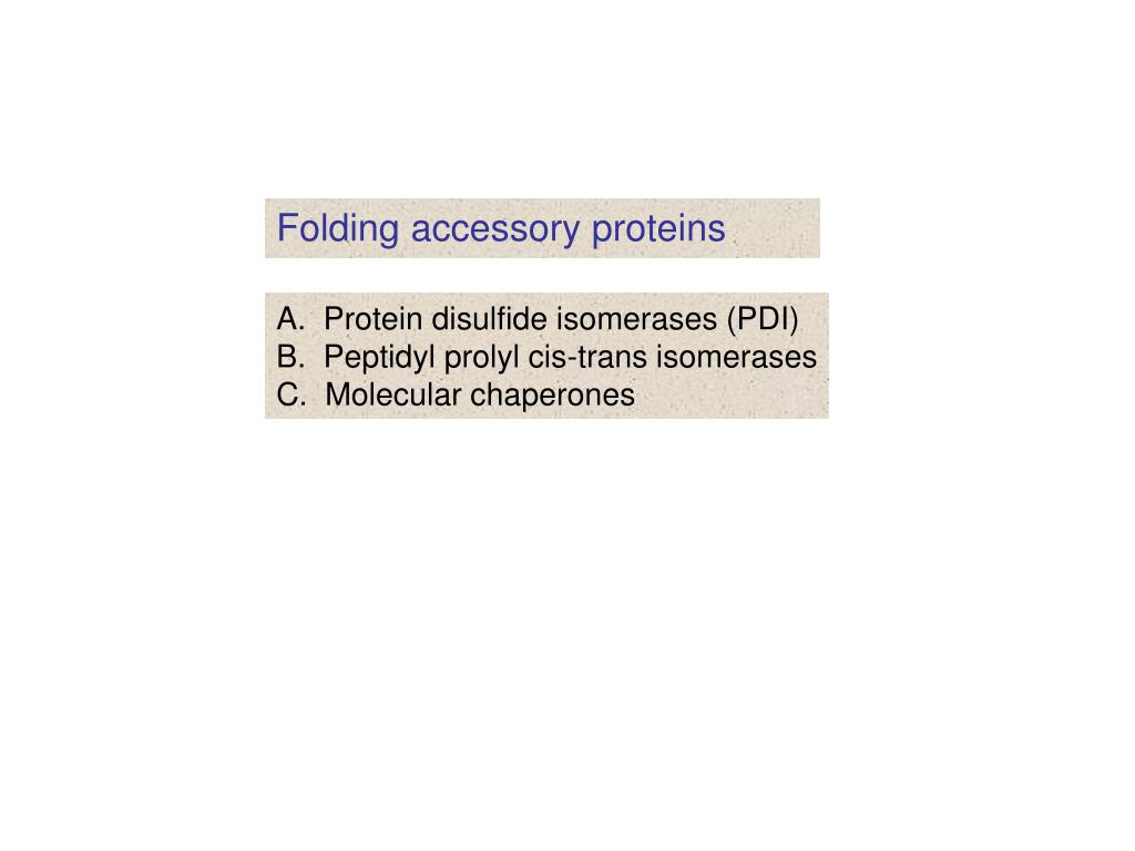 Folding accessory proteins