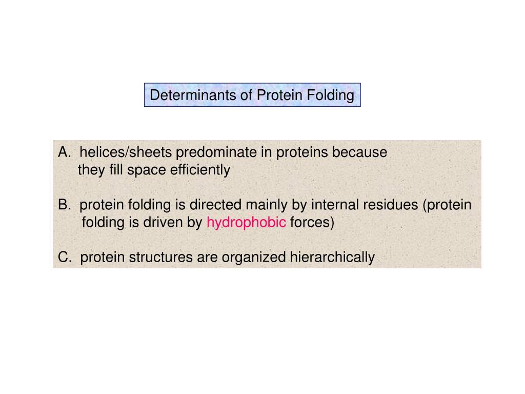 Determinants of Protein Folding