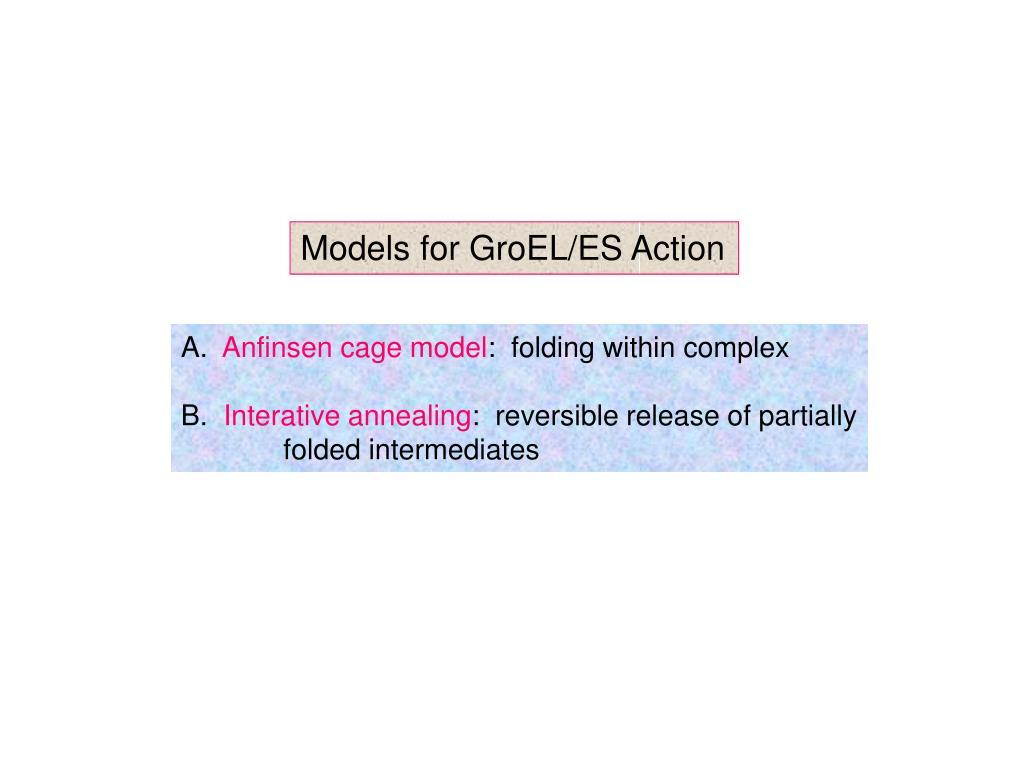 Models for GroEL/ES Action