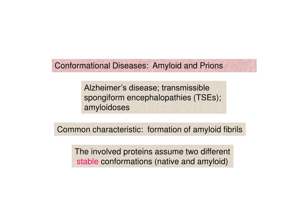 Conformational Diseases:  Amyloid and Prions