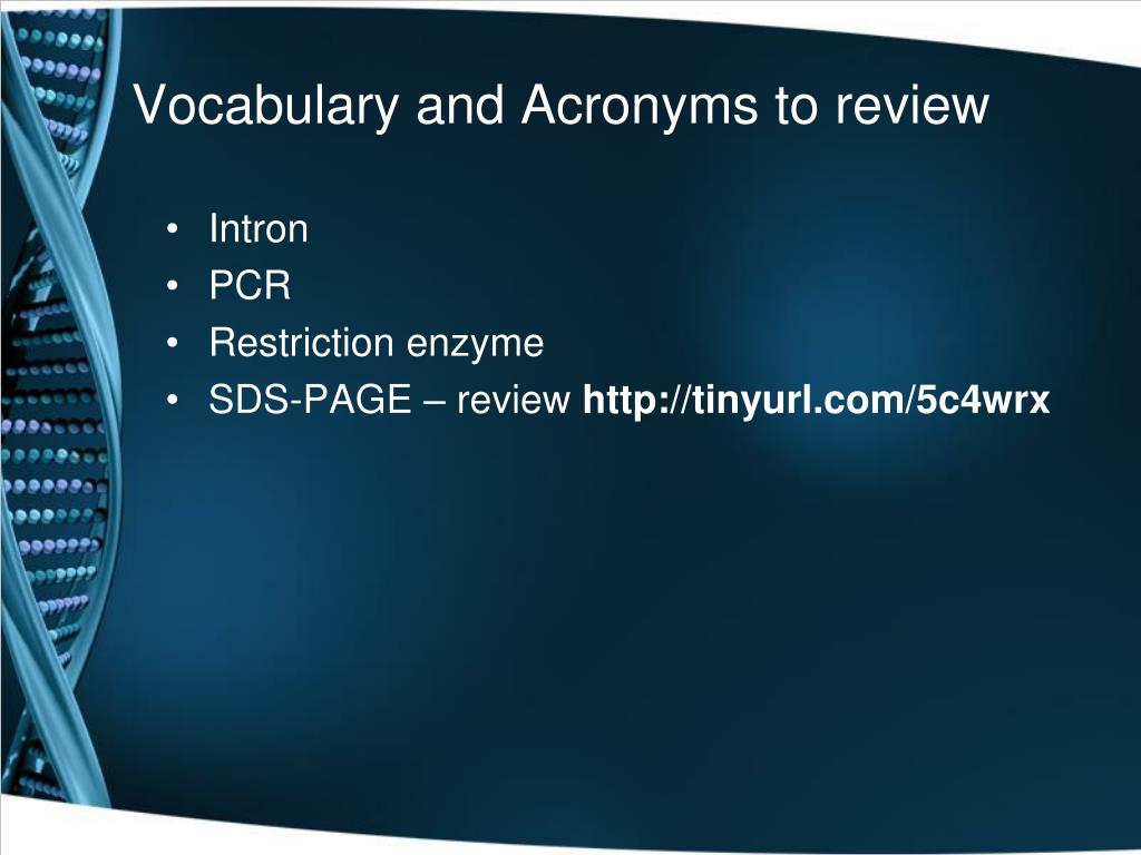 Vocabulary and Acronyms to review