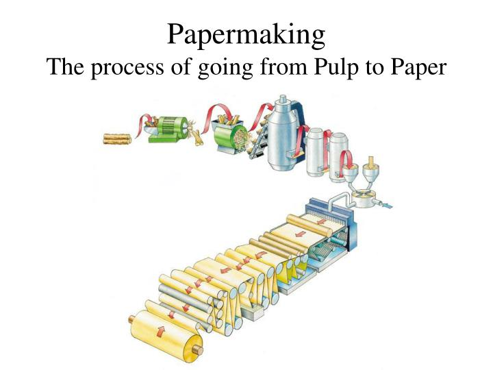 PPT - Papermaking The process of going from Pulp to Paper ...
