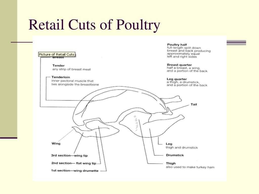 Retail Cuts of Poultry