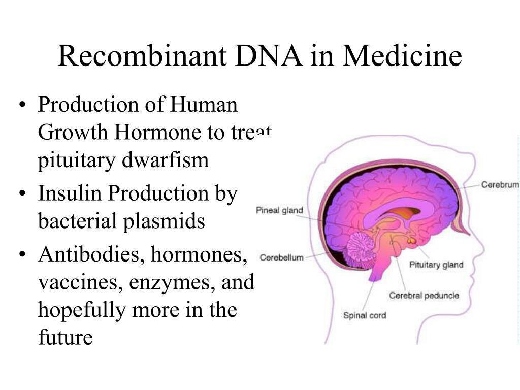 Recombinant DNA in Medicine