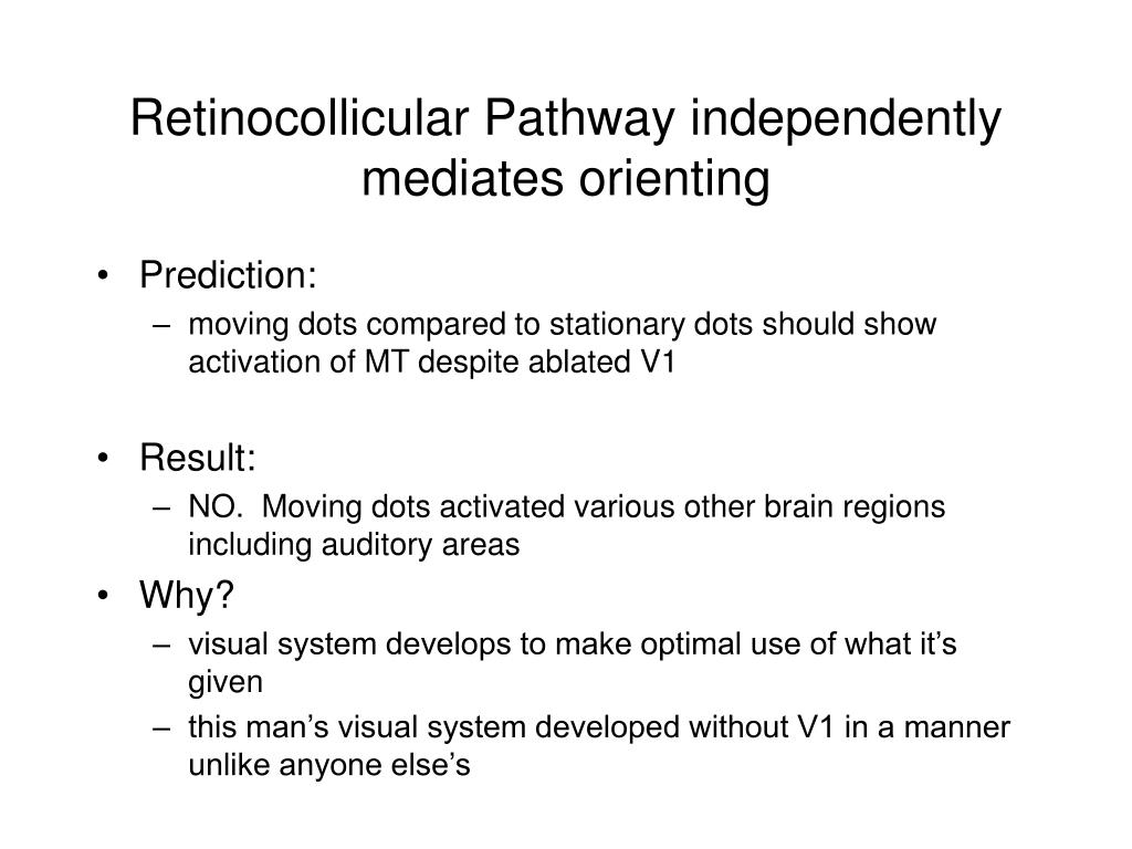 Retinocollicular Pathway independently mediates orienting
