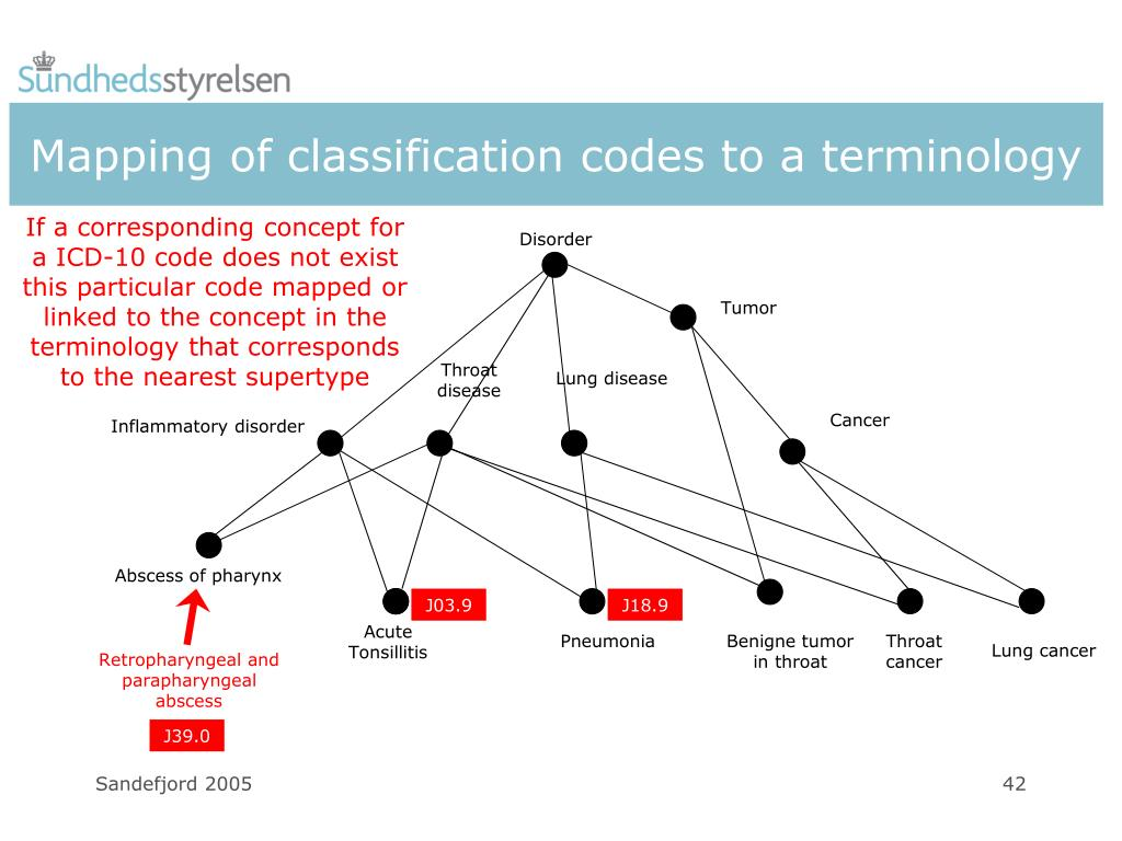 Mapping of classification codes to a terminology