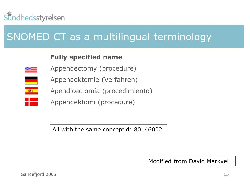 SNOMED CT as a multilingual terminology