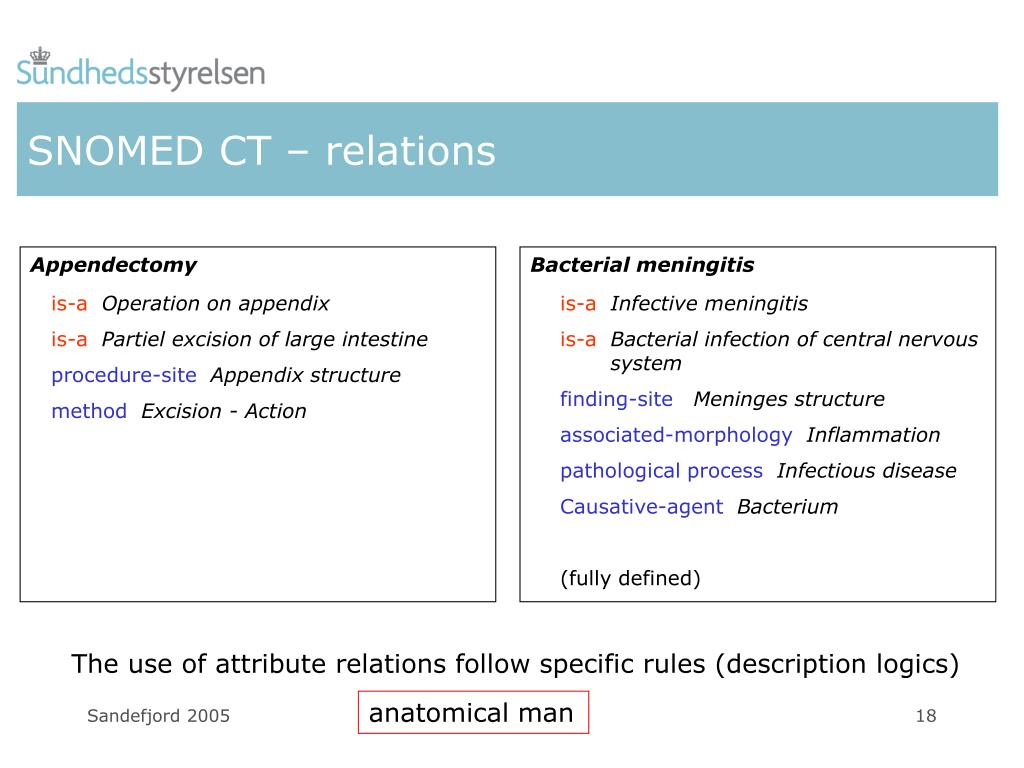 SNOMED CT – relations